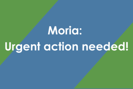 Letter to the European Commission - Moria: Immediate action needed!